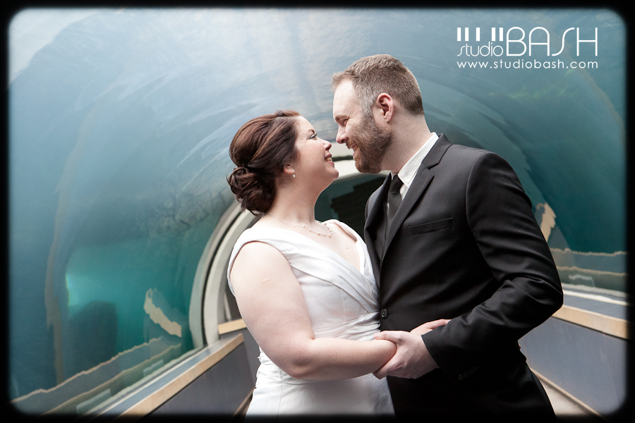 Emily and Ben's Pittsburgh Zoo and PPG Aquarium Wedding Reception