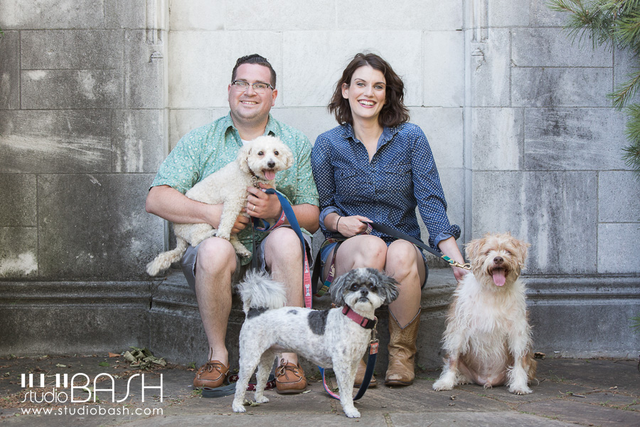 Pittsburgh Dog Photographer – Harold, Henry and Mulligan